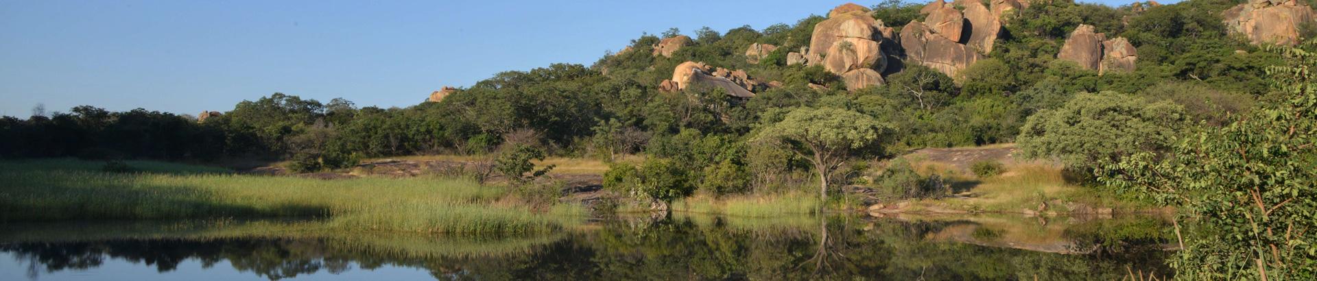 The Amalinda Safari Collection - Gallery